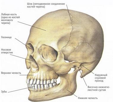 Ушиб головного мозга легкой степени