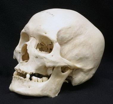 Классификация открытых повреждений черепа и головного мозга