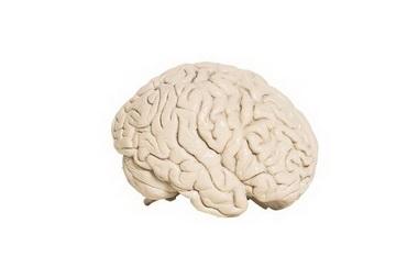 Нутритивная поддержка у больных с черепно-мозговой травмой