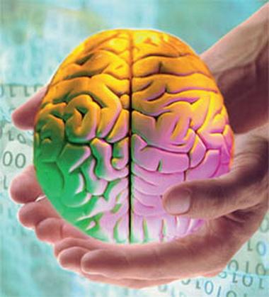 Синдромы поражения продолговатого мозга