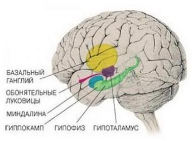 Мозжечково-тенториальное вклинение
