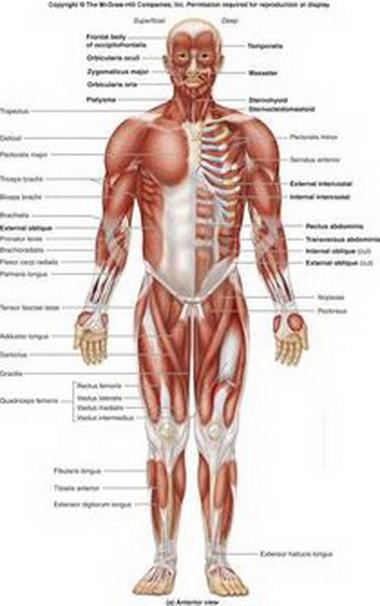 Поражения периферической нервной системы