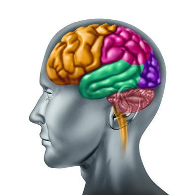 Симптомокомплексы поражения коры головного мозга